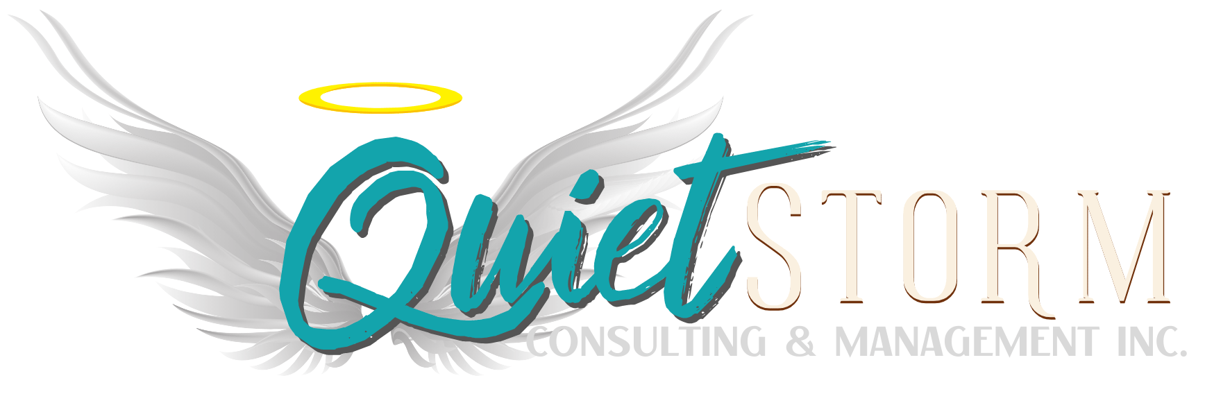 QUIET STORM CONSULTING & MGT INC